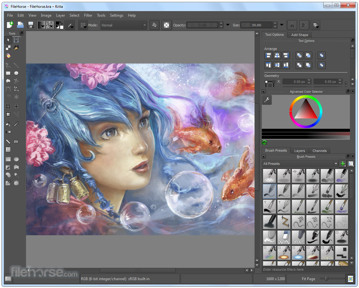 Krita 4.4.2 (64-bit) Screenshot 1