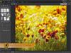 PhotoDirector 8.0.2303 Screenshot 2