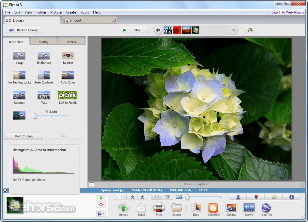 The latest version of Picasa can recover your pictures