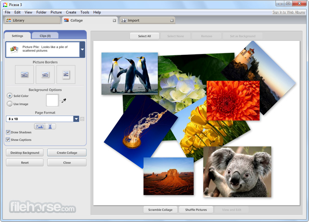 Picasa 3.9 Build 141.303 Captura de Pantalla 3