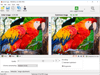 RIOT Optimizer 0.6.2 Captura de Pantalla 1