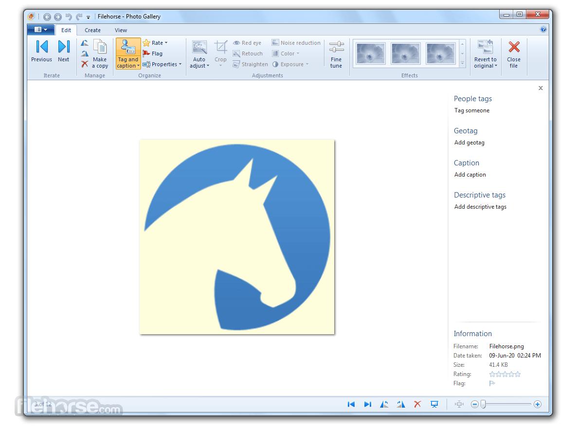 Windows Photo Gallery 16.4.3528.331 Captura de Pantalla 2