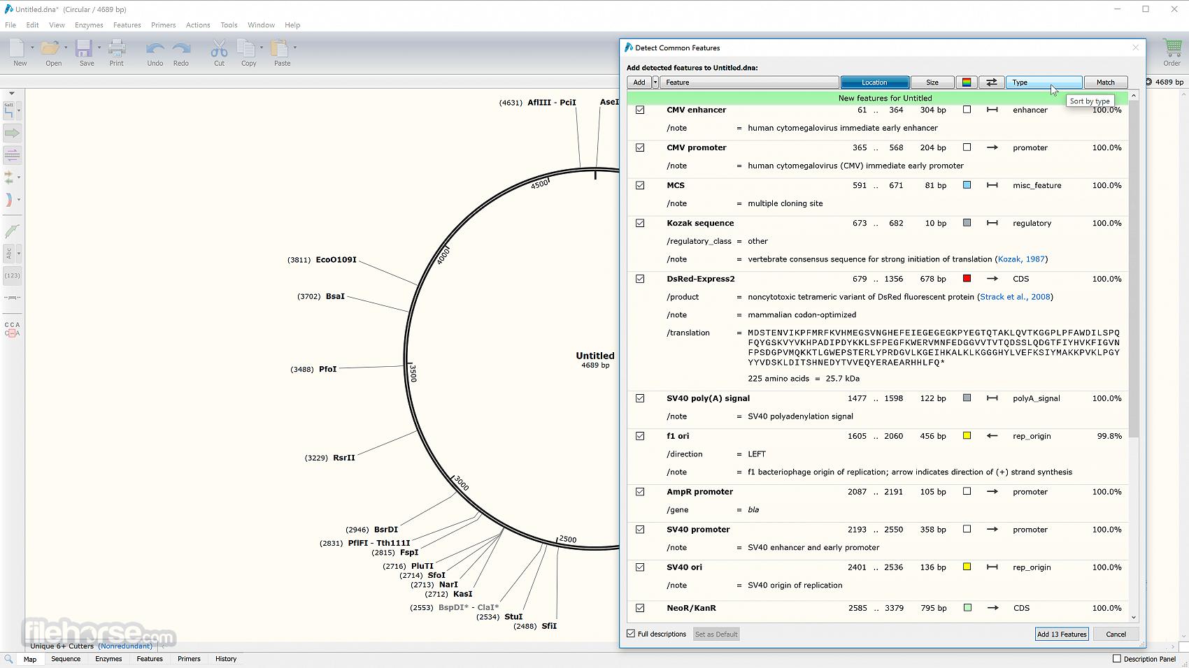 SnapGene 5.2.0 Screenshot 2