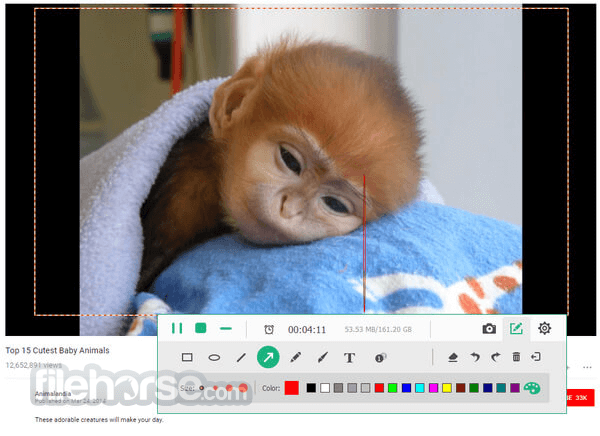 Download  Apeaksoft Screen Recorder for Windows free 2021