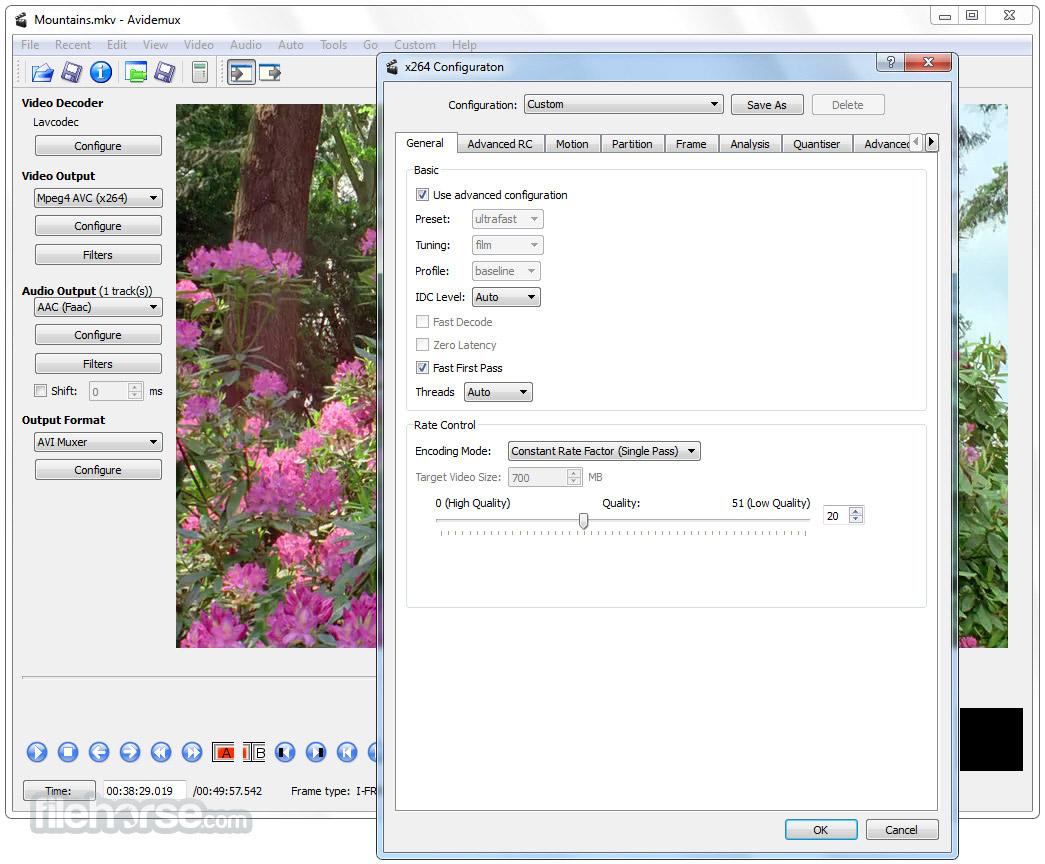 Avidemux 2.7.0 (32-bit) Captura de Pantalla 3