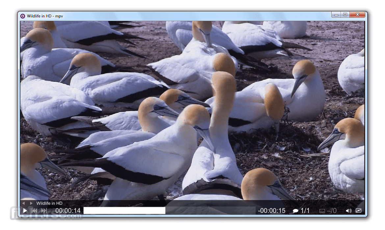 MPV Player 0.33.0 (32-bit) Screenshot 1