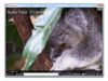MPV Player 0.32.0 (32-bit) Screenshot 2